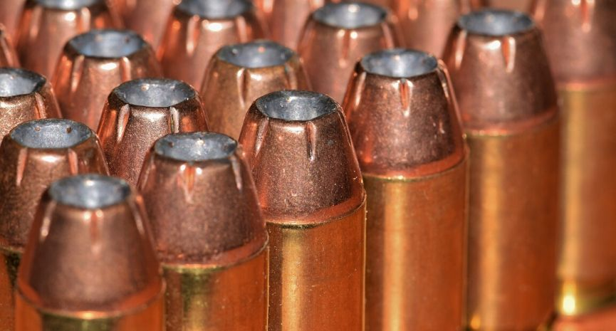 Best Ruger 10/22 Ammo - Feature Image